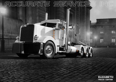 accurate services INC